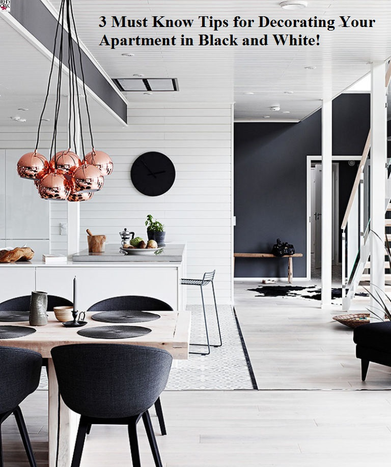 48 Must Know Tips For Decorating Your Apartment In Black And White Enchanting Decorating Apartments Property