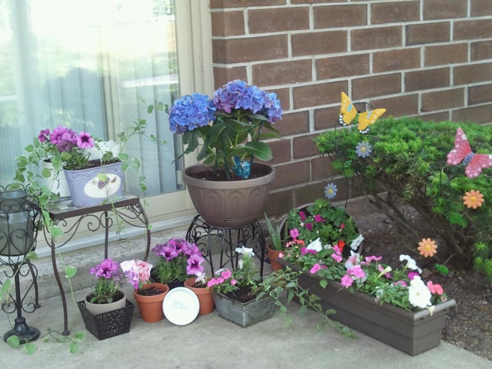 Low Maintenance Apartment Patio Gardening